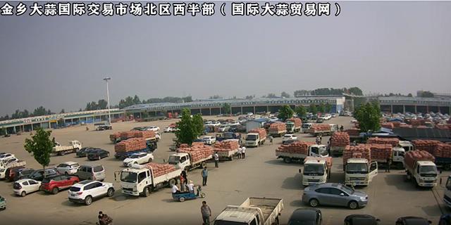 金乡大蒜国际交易市场北区西半部