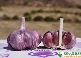 西班牙大蒜:国际需求强劲 ()