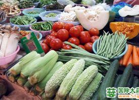 湖南益阳:季节性蔬菜上市量减少 ()