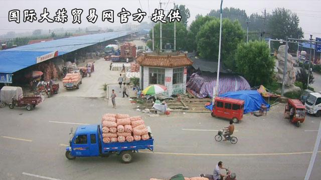 苍山卢祚大蒜市场南半部大蒜交易实况